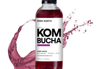 Seek North Kombucha