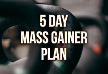 5 Day Plan - Mass Gainer